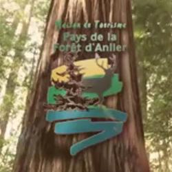 La Maison du tourisme du Pays de la Forêt d'Anlier