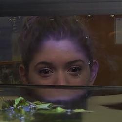 Etude du milieu : L'aquarium-museum